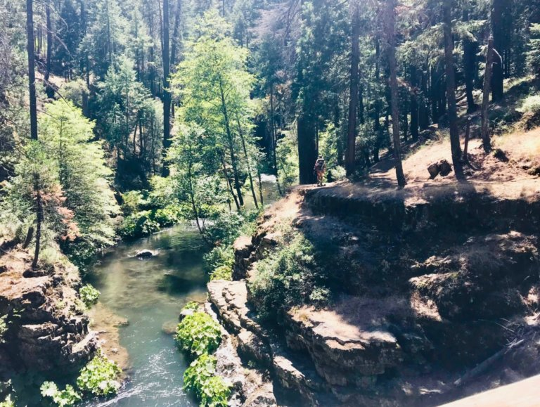 McCloud River & Squaw Valley Creek